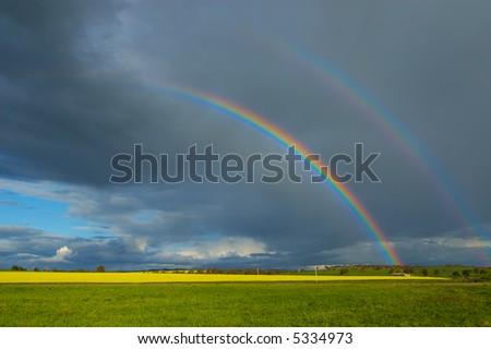 Canola Field and Rainbow - stock photo