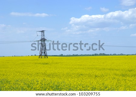 Canola Fields under Cloudy Sky in Spring Landscape