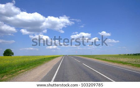 Canola Fields under Cloudy Sky in Spring Landscape - stock photo