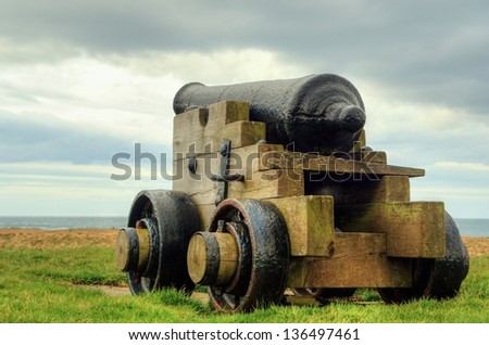 canon - stock photo