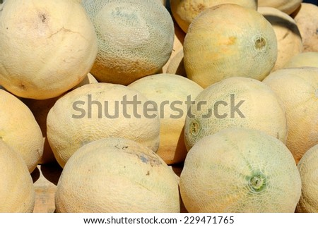 Cantaloupe for sale at outdoor market - stock photo
