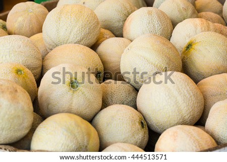 Cantaloupes for sale at the farmers market in Asheville North Carolina