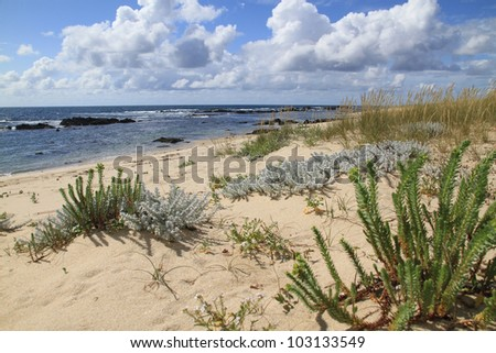 Canto Marinho beach - Nominated for one of the wonders of Portugal in the category of Wild Beach - stock photo