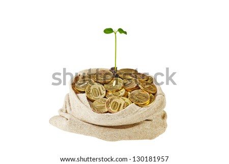 Canvas bag full with gold coins and a gentle green sprout. Isolated on white