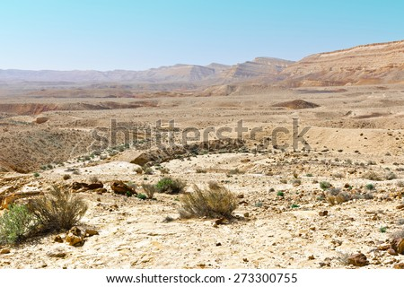 Canyon in the Judean Desert on the West Bank of the Jordan River - stock photo