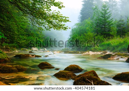 Canyon Mostnica near lake Bohinj in Slovenia (Mostnice Korita) - stock photo