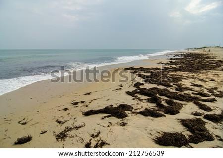 Cape Hatteras National Seashore on Hatteras Island North Carolina USA - stock photo
