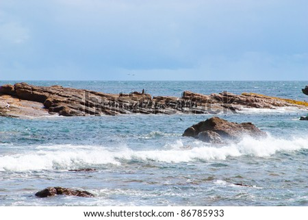 Cape of Good Hope along the Atlantic coast of South Africa, Cape Town - stock photo