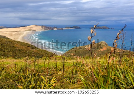 Cape Reinga, North Island, New Zealand - stock photo