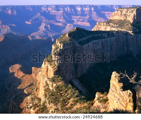 Cape Royal, Grand Canyon National Park Arizona, North Rim View In The First Light Of Dawn - stock photo
