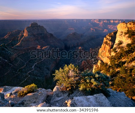 Cape Royal, Grand Canyon National Park, Arizona, North Rim View In The First Light Of Dawn - stock photo