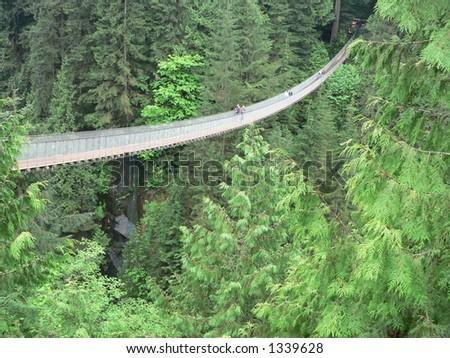 Capilano Bridge in Vancouver - stock photo