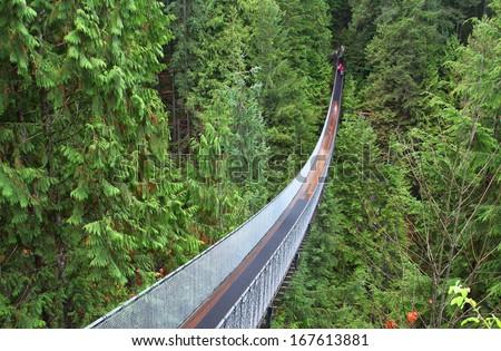 Capilano suspension bridge near Vancouver in Canada - stock photo