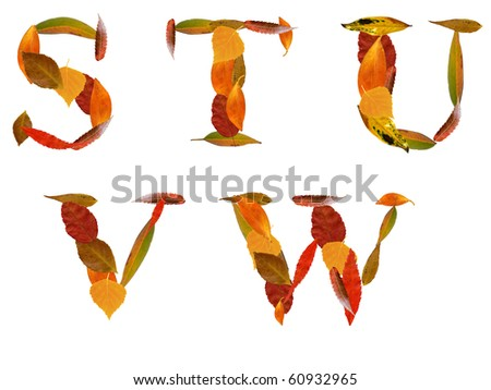 Capital letters made by autumn leaves with work path - stock photo