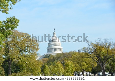 Capitol and the fall trees