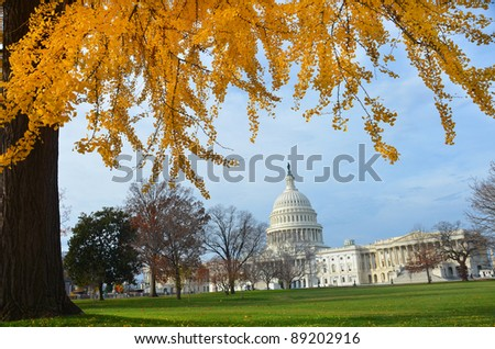 Capitol Building in Autumn with yellow tree branches, Washington DC USA - stock photo