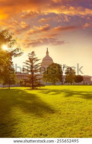 Capitol building Washington DC sunset garden USA US congress - stock photo
