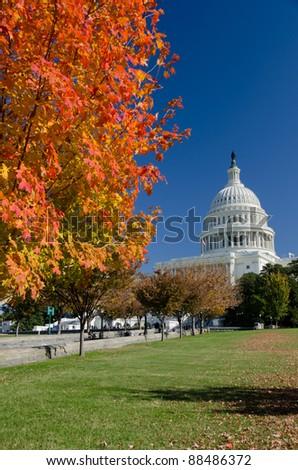 Capitol in autumn, Washington DC USA - stock photo