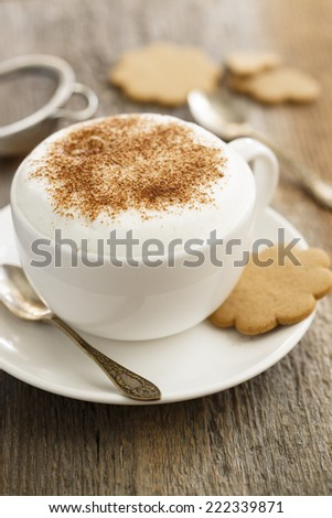 Cappuccino in white cup with cinnamon - stock photo