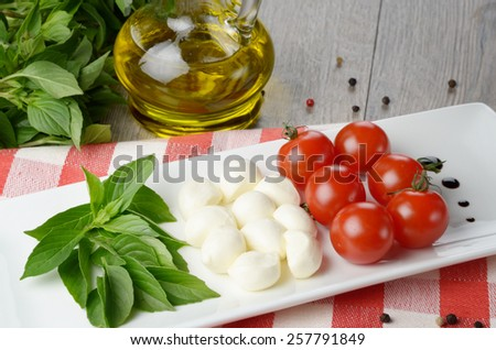 Caprese salad in shape of Italian flag on the white plate - stock photo