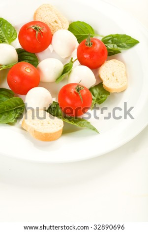 Caprese salad on white plate - stock photo