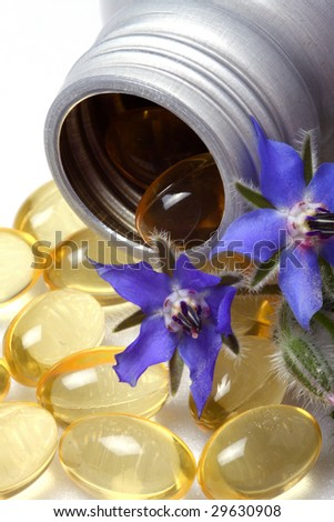 Capsules of borage oil and borage flowers. - stock photo