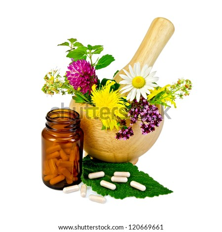 Capsules on green leaf of sage, brown jar, wooden mortar with a sprig of mint, flowers of chamomile, clover, oregano, mignonette, elecampane isolated on white background - stock photo