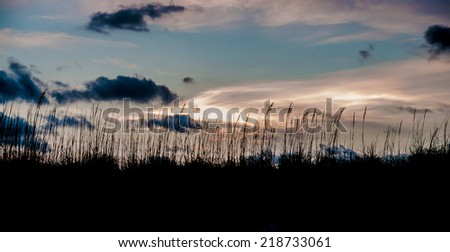 Captured this image while walking to Pier 60 on Clearwater Beach in Florida. / Sunset in Florida - stock photo