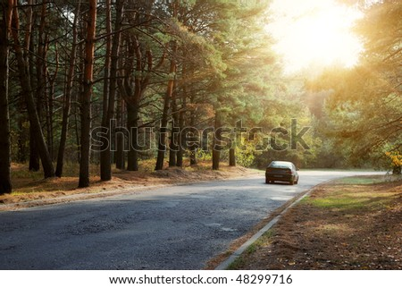 car driving on forest road and sun beams