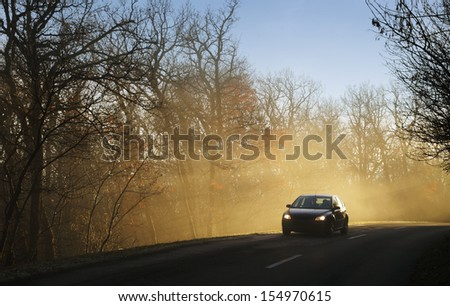 Car driving on forest road in sun beams