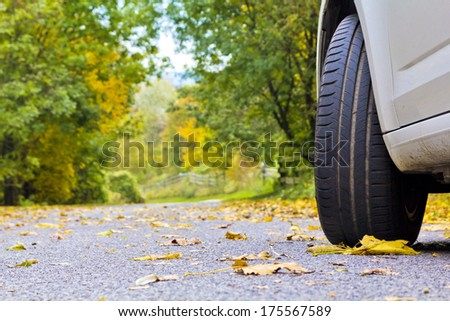 Car in the autumn - stock photo