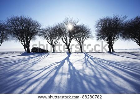 Car in winter landscape - stock photo