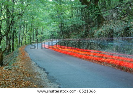 car light exposure in road forest - stock photo