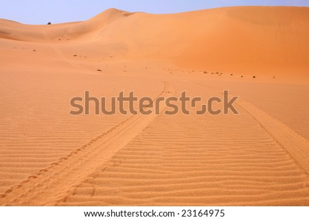 Car prints in sand, namibian desert - Africa - stock photo