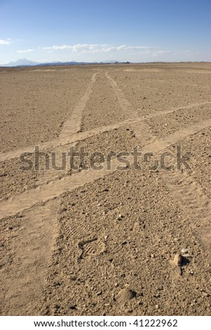 Car tire print in the middle of the desert in Hurghada, Redsea