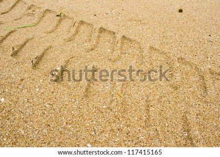 Car tracks in the sand at the beach. - stock photo