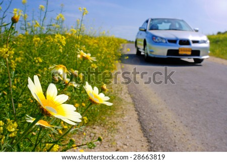 car traveling at springtime chamomile blooming - stock photo