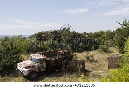 Car with the cells, which transports lions. Crimea. Summer 2015