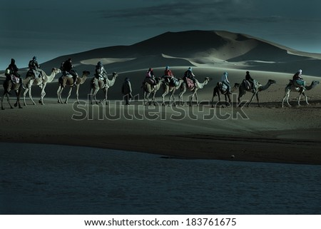 Caravan of tourists passing desert lake on camels in moonlight - stock photo