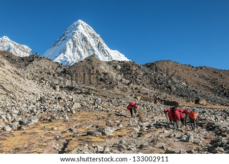 Caravans with cargoes for climbers on the path between the Lobuche and Gorak Shep - Everest region, Nepal - stock photo