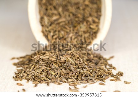 Caraway, spice and medicine - stock photo