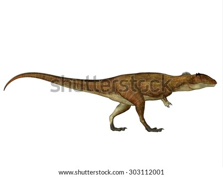 Carcharodontosaurus Side Profile - Carcharodontosaurus was a carnivorous theropod dinosaur that lived in Sahara, Africa during the Cretaceous Period. - stock photo