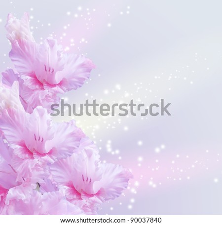 Card with gladiolus and sparkling stars