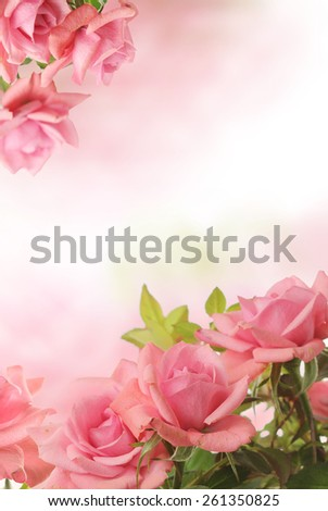 card with pink roses - stock photo