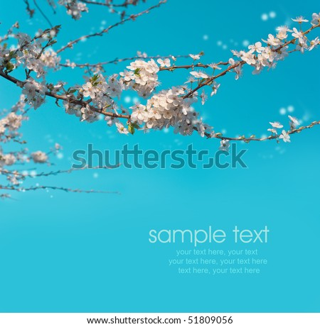 card with spring cherry blossoms and text