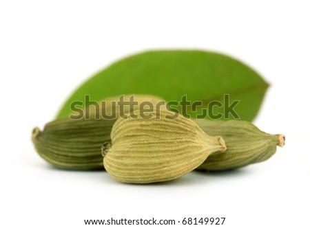 Cardamom or cardamon green elettaria - stock photo