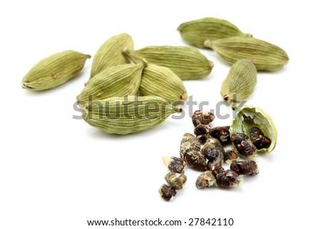 cardamon with cardamon seeds - stock photo