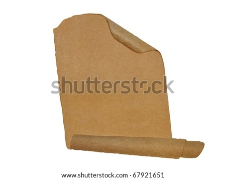 cardboard roll scraps isolated on white background - stock photo