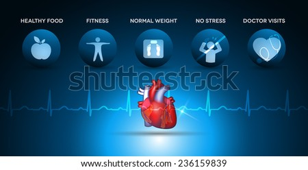 Cardiology health care icons and heart anatomy with normal heartbeat rhythm