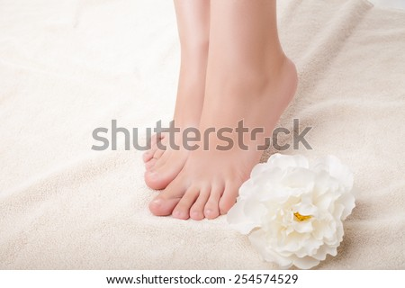 care for beautiful woman legs. Legs and flower composition. Isolated over white background. - stock photo